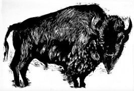 Mead_Bison